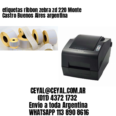 etiquetas ribbon zebra zd 220 Monte Castro Buenos Aires argentina